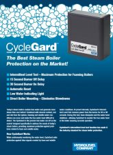 Cycleguard 450 Low Water Cutoff Steam
