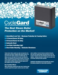 Cycleguard 450 Low Water Cutoff Steam